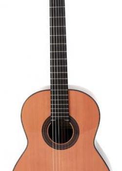 Guitare Prodipe Soloist 500