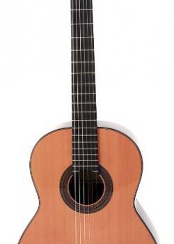 Guitare Prodipe Soloist 900