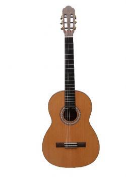 Guitare Primera